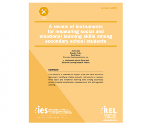 A Review of Instruments report cover