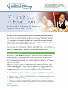 Mindfulness Brief Cover
